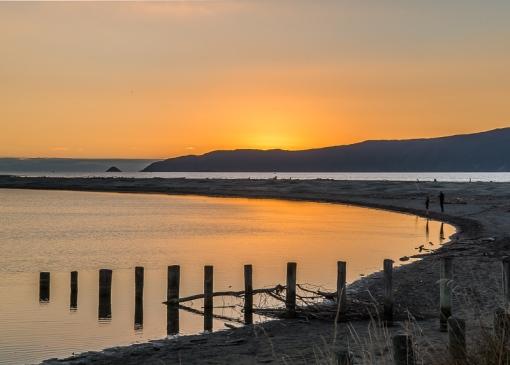 Waikanae Estuary - NZNK169195