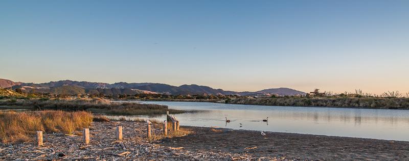 Waikanae Estuary - NZNK169197