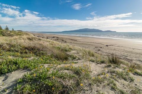 Waikanae Beach - NZNK169198