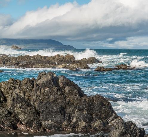 Lyall Bay - NZNW169384